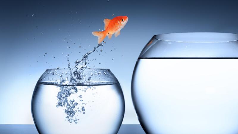 По ту сторону страха нас ждут возможности и рост. (Михал Беднарек / Shutterstock)    Epoch Times Россия