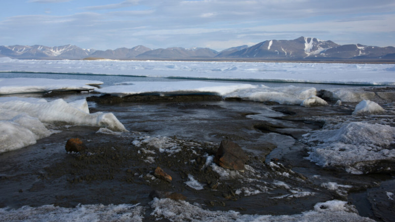 Недавно обнаруженный остров у побережья Гренландии, 28 августа 2021 года. (Morten Rasch via AP)  | Epoch Times Россия