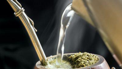 Чай мате: польза для здоровья и альтернатива кофе