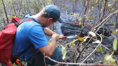 Режим ЧС ввели в Нижегородской области и Мордовии из-за лесных пожаров