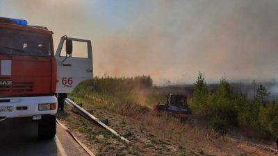 В Марий Эл эвакуировали детские лагеря и санаторий из-за лесных пожаров