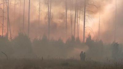 Пожарные в Мордовии смогли вырваться из огненного кольца (видео)