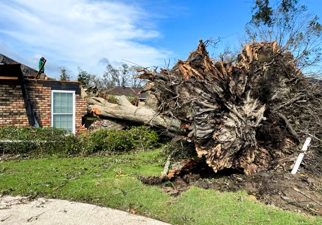 Дерево врезалось в дом во время урагана «Ида» 29 августа в округе Сент-Джон, штат Луизиана, 31 августа 2021 г. (Charlotte Cuthbertson/The Epoch Times)