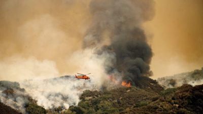 Лесные пожары в Калифорнии угрожают древним секвойям в Сьерра-Неваде