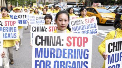 Китайская компартия проводит «холодный геноцид» последователей Фалуньгун