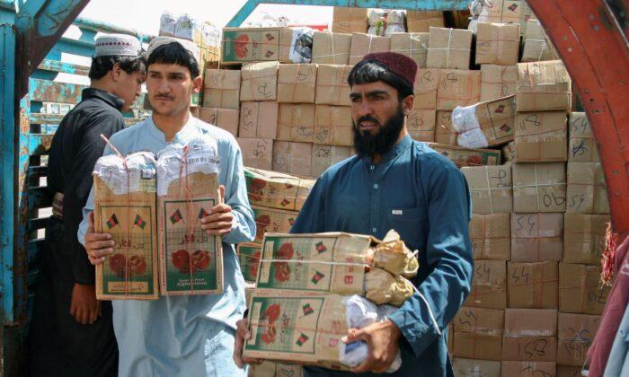 Китай и Пакистан спешат оказать помощь Афганистану, пока Запад раздумывает