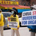 Медики США уходят от вопроса об извлечении органов в Китае