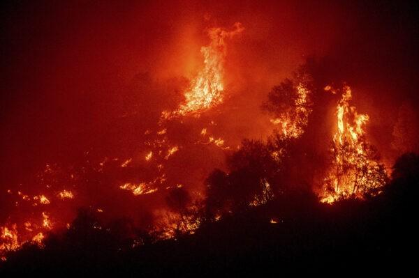 Пожар в национальном парке Секвойя, Калифорния, 14 сентября 2021 г.(Noah Berger/AP)