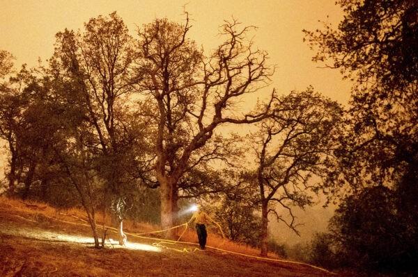 Тушение пожара в национальном парке Секвойя, Калифорния, 14 сентября 2021 г. (Noah Berger/AP)