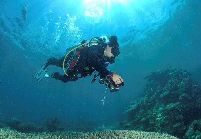 3a e1631196598559 - Исследователи составили первую в истории детальную онлайн-карту коралловых рифов мира
