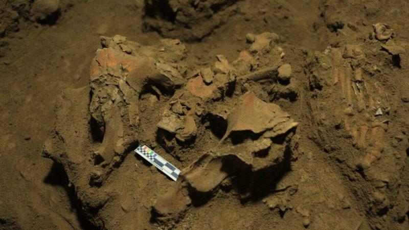 В Сулавеси археологи нашли останки девочки-подростка из провинции Сулавеси. (Supplied, Leang Panninge research team)  | Epoch Times Россия