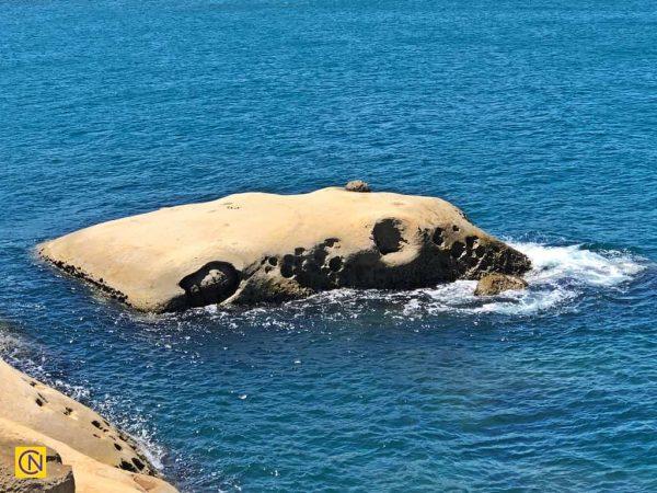 Знаменитая «Слоновья скала» в геопарке Елю. (Billy Shyu via Nspirement)