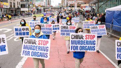 Правозащитники выпустили декларацию о предотвращении насильственного извлечения органов