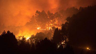 Испанию охватили лесные пожары. Более 800 человек покинули дома