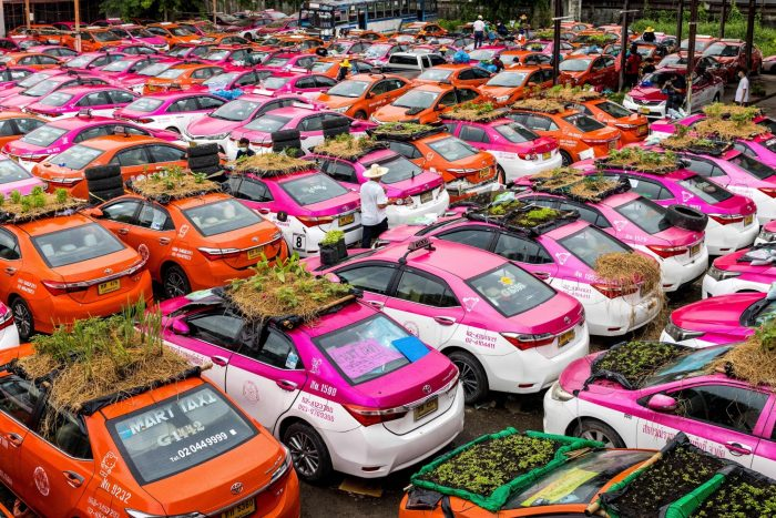 Бангкокские такси превратились в огороды из-за отсутствия клиентов
