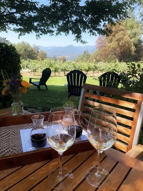 Роскошный вид с места для дегустации вина на винодельне Wooldridge Creek Winery в южном Орегоне. (Janna Graber)