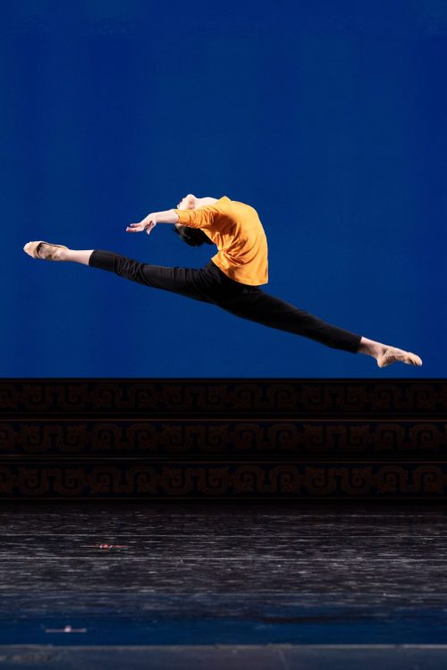 angela lin 1200x1800 1 e1630941420766 - Что изображает в танце юная Анжела Линь?