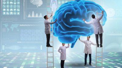 Три основных мифа о мозге