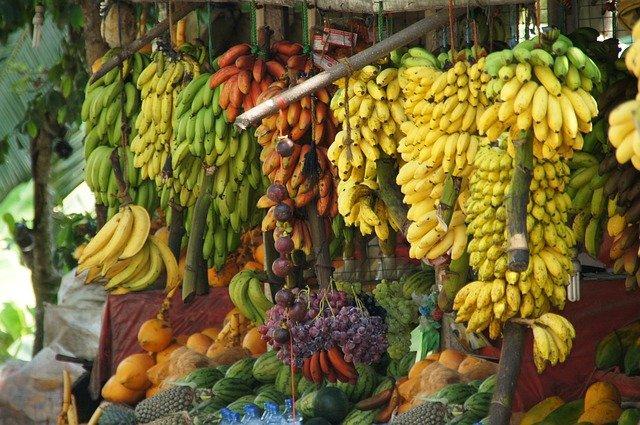 Впервые я посадил бананы в конце 2013 года. Ближе к началу сезона дождей на обочинах индийских дорог продают какие-то корни-обрубки. Тогда я купил за 100 рупий три корня. Так начался мой банановый опыт.