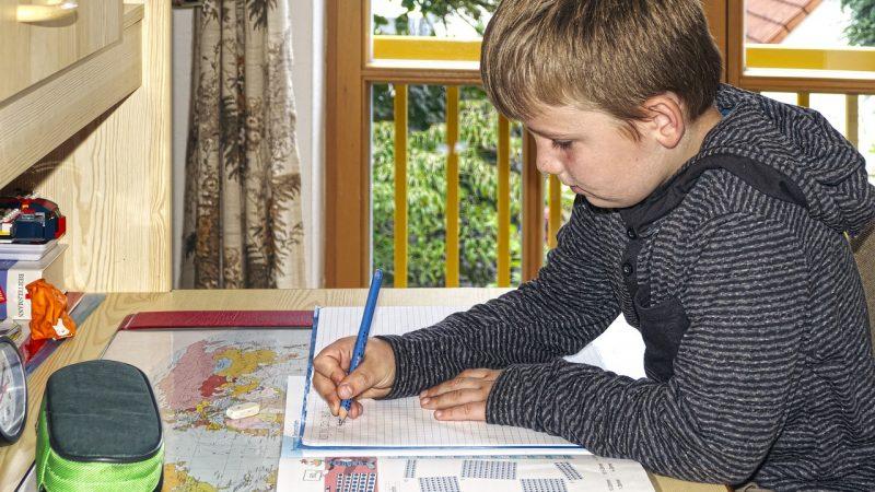 Школьник учится дома. pixabay.com/Wolfgang Ecker/СС0   Epoch Times Россия