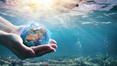 Пластиковые отходы угрожают морским жителям