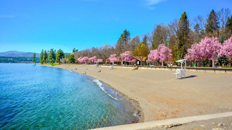 Песчаный пляж вдоль берега озера Кёр-д'Ален в весеннее время в Кер-д'Алене, штат Айдахо. (Kirk Fisher/Shutterstock) | Epoch Times Россия