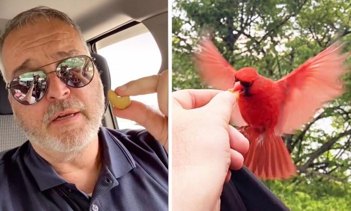 Кардинал ежедневно обедает со своим другом шофёром