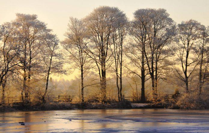 В традиционной китайской медицине говорят, что зима — это время для почек. (Изображение: Brett Critchley via Dreamstime) | Epoch Times Россия