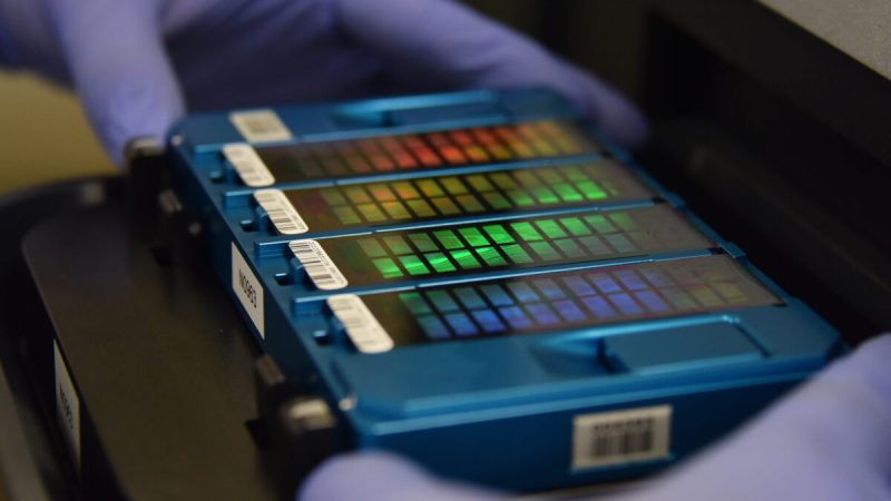 Техник помещает данные, содержащие информацию о ДНК, в сканер в Пекине 22 августа 2018 года. Greg Baker/AFP via Getty Images | Epoch Times Россия