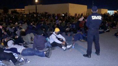 В грузовиках на границе Мексики обнаружили 652 мигранта