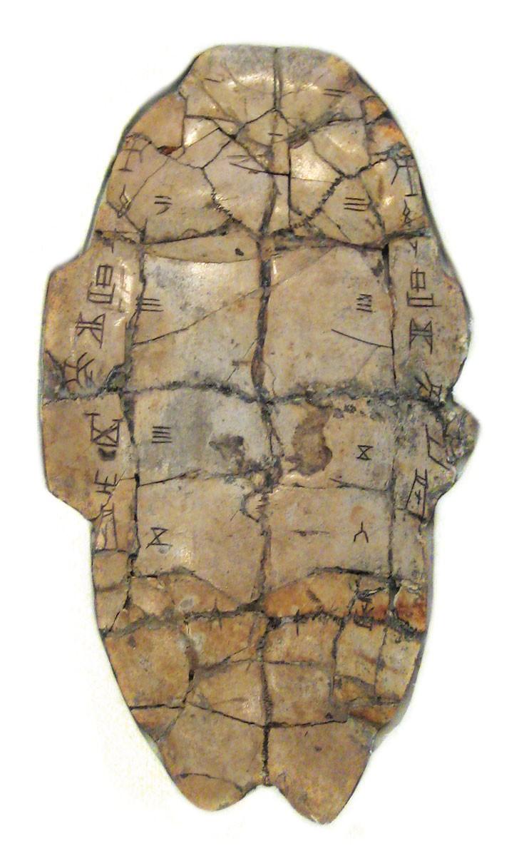 Скрипт оракула кости. Фото: magnifissance.com