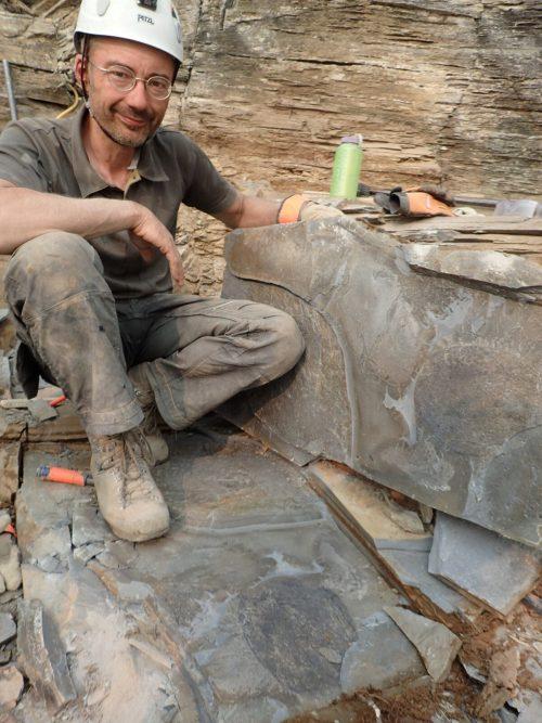Найдены останки древнего неизвестного животного