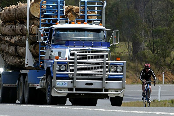 Перевозка леса. (Clive Mason/Getty Images)   Epoch Times Россия