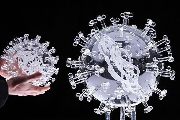 Модель коронавируса COVID-19. (Finnbarr Webster/Getty Images) | Epoch Times Россия
