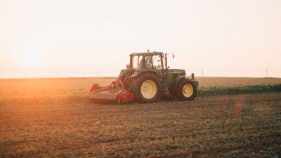 Готовность России отдать в аренду Узбекистану 1 млн га земли всколыхнула общественность