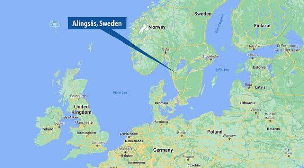 2500-летняя сокровищница, найденная в лесу Алингсос, Швеция. (Изображение: dailymail.co.uk)