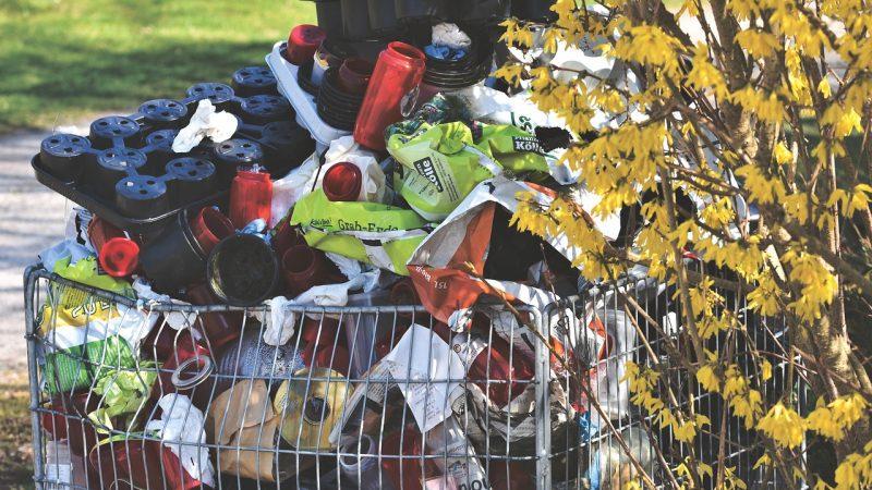 Одноразовая упаковка занимает более 50% мусора на российских полигонах. pixabay.com/Capri23auto/СС0   Epoch Times Россия