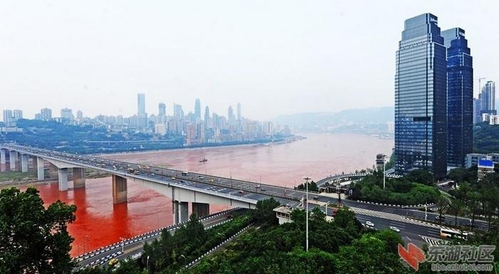 В реке Янцзы содержится более 300 видов токсичных веществ