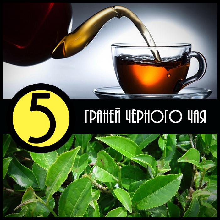 5 граней чёрного чая