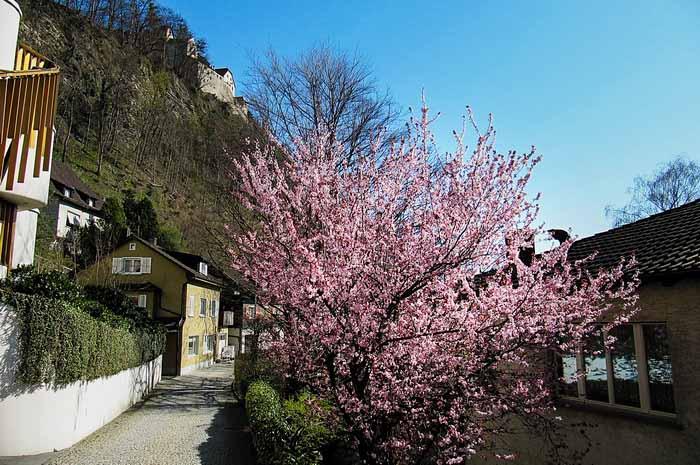 Вадуц — маленький город в маленькой стране