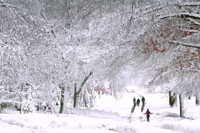 В США не прекращаются снегопады