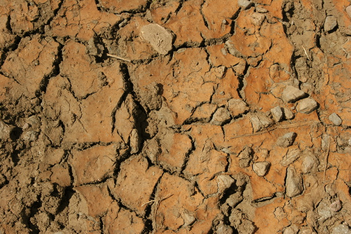 Древняя цивилизация в долине Инда погибла от засухи