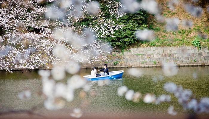 В Японии всем желающим выдают «сертификаты любви»