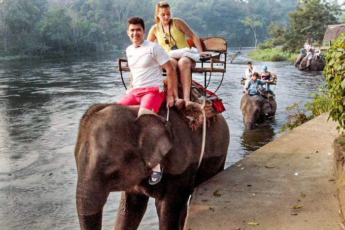 Тайским слонам посвящается