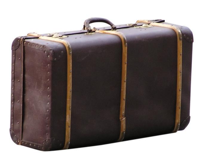 Нелегал попытался пересечь границу в чемодане