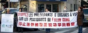 Призыв положить конец извлечению органов у живых практикующих Фалуньгун, санкционированное КПК. Фото: minghui.org