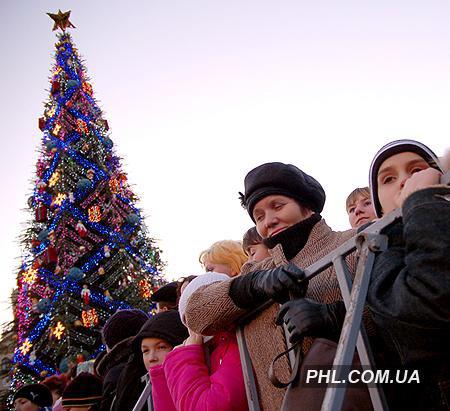 35-метровая елка, украшенная игрушечными поросятами, будет радовать киевлян все Новогодние праздники. Фото:http://phl.com.ua