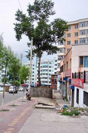 Улица не для туристов. г. Суйфэньхэ. Фото: Нелли Родионова/Великая Эпоха