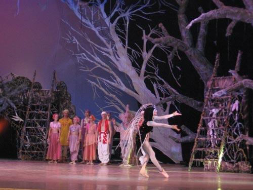 Артисты балета:  жители индийской деревни и зверь джунглей – дикобраз. Фото: Наталья Леонова/Великая Эпоха
