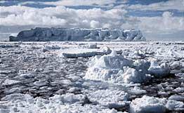 В Антарктиде обнаружены следы подледного вулканического извержения. Фото с сайта rian.ru